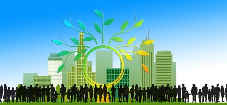 Rządowe wsparcie instalacji fotowoltaicznych dla spółdzielni i wspólnot